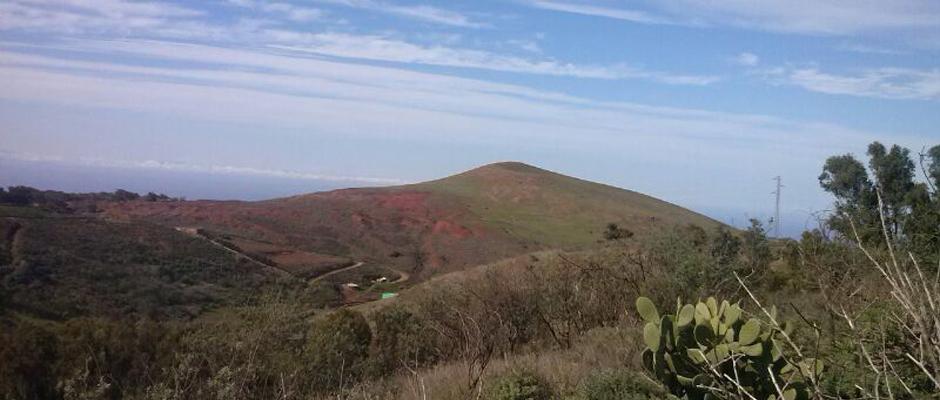 Paraje de Pico Viento, en las medianías de Gáldar, cerca de Saucillo, donde se instalará el nuevo parque eólico.