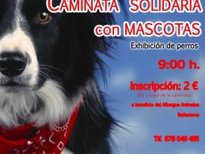 cartel caminataperros2014