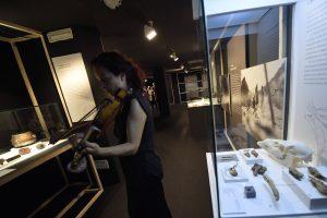 Otro detalle de la muestra inaugurada ayer en Santillana del Mar.